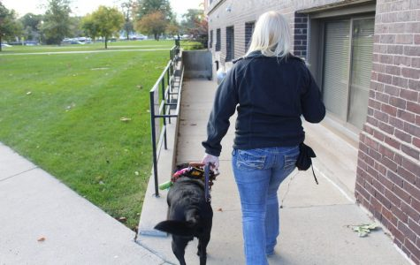 A guide of love: the bond between a service dog + a freshman in college