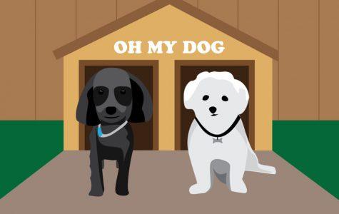 OMD (Oh My Dog)