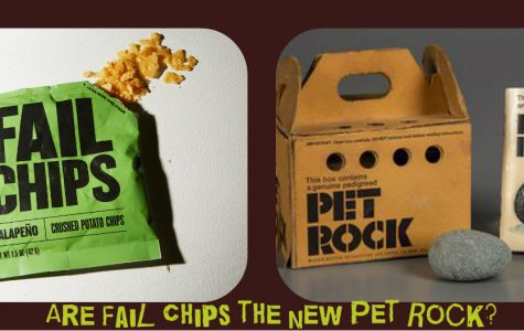 Are Fail Chips the new Pet Rock?