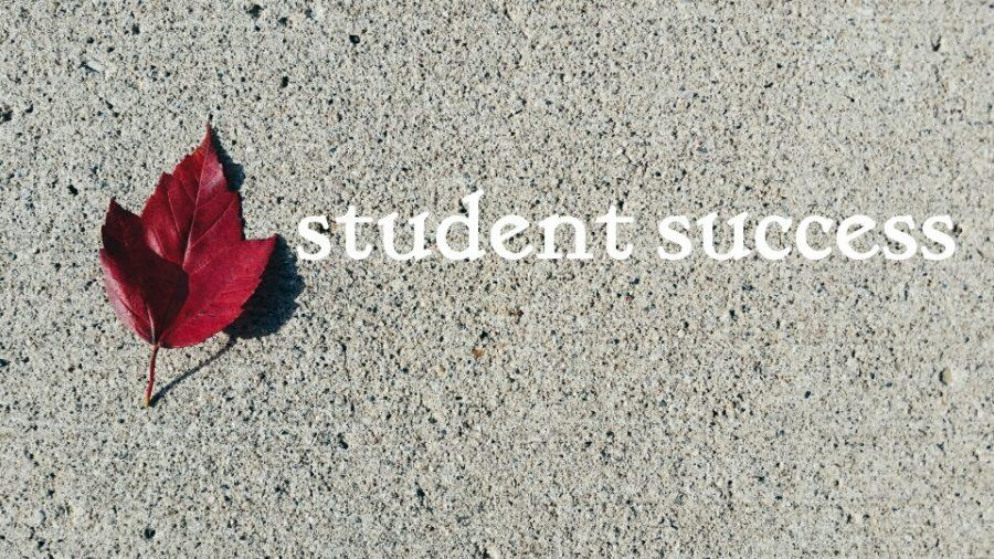 Resources to help you become a successful student at BVU