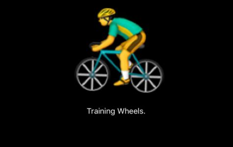 Rules of Life: Training Wheels (are they really such a bad thing?)