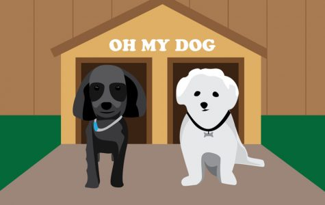 OMD: A Day in the Life of Dogs