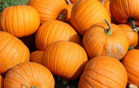 It's Pumpkin Time At Buena Vista Univeristy