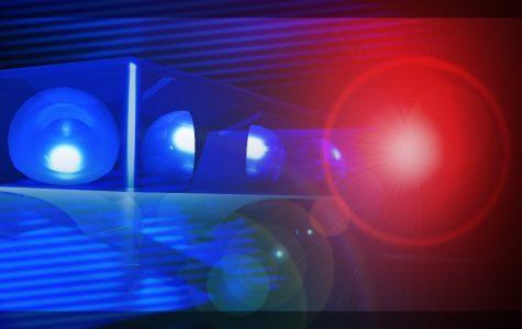 Arrest made in racial incidents