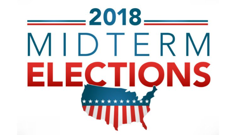 Vote in the Midterm Elections