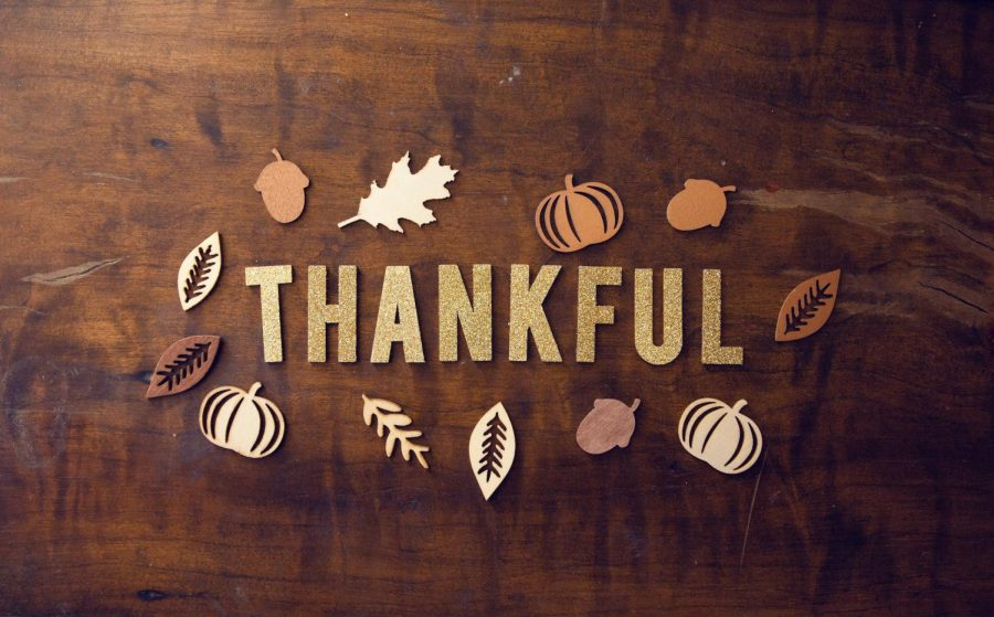 Things I'm Thankful for this November