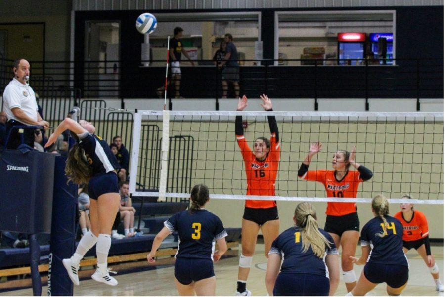 Buena Vista University Outside Hitter SYDNEY MCLAREN spikes the ball against Wartburg College.