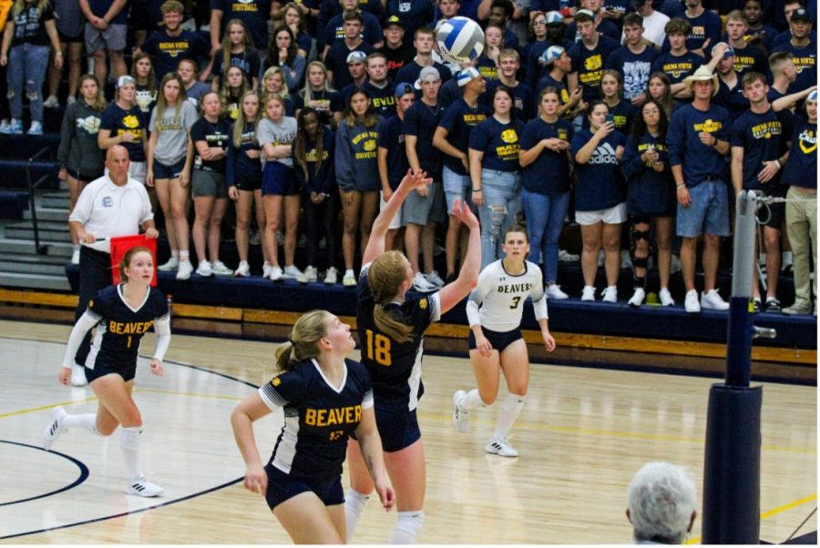 Buena Vista University Setter TAYLOR WEDEMEYER sets the ball against Wartburg College.